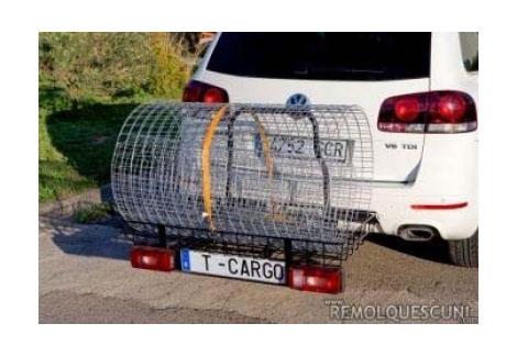 Transportes multifuncionales